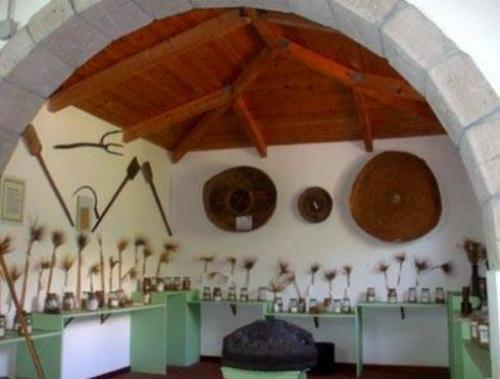 Museo del Molino Galleu