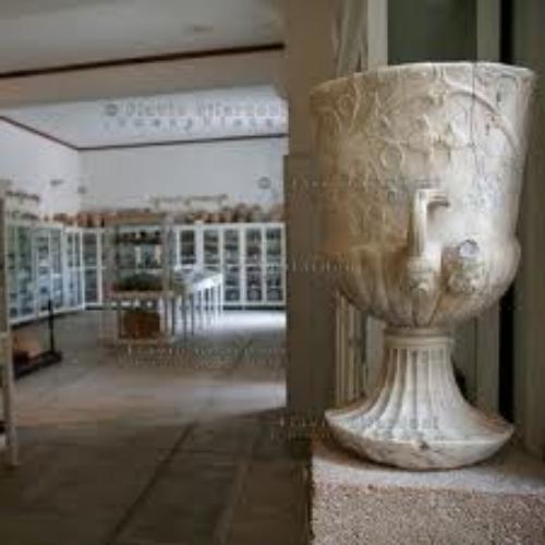Museo della Fondazione Whitaker