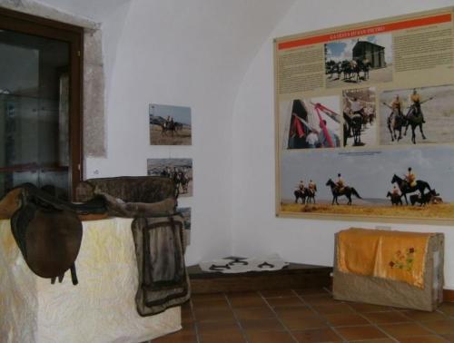 Museo del cavallo di Pozzomaggiore