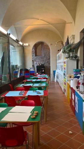"""Mandala e colore. Gli animali della preistoria dipinti """"ad Arte"""" al Museo Civico di Cuneo"""