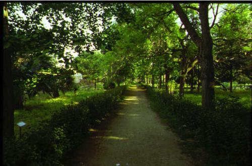 Istituto orto botanico
