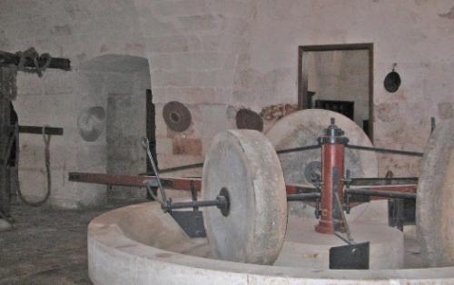 Museo dell'olio d'oliva di Fasano