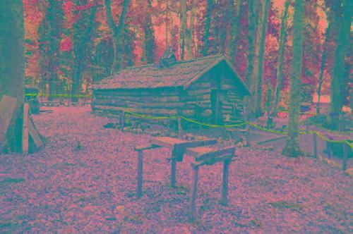 Museo naturalistico della Foresta Umbra
