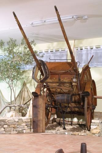 """Museo della civiltà contadina """"Terlizzi"""""""