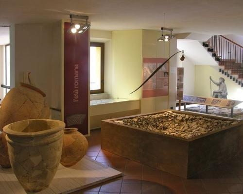 Museo della Regina