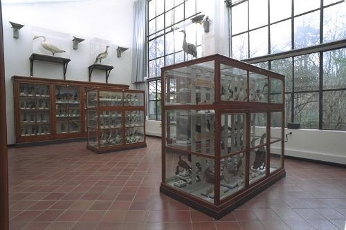 Museo di storia naturale di Parma