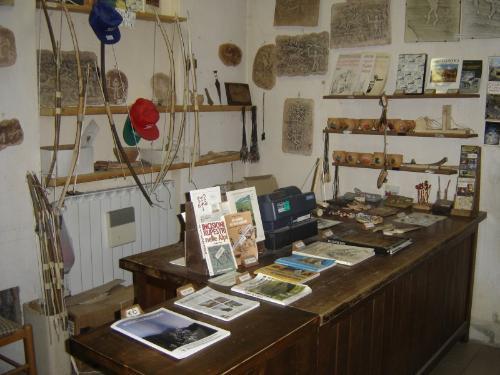 Museo didattico d'arte e vita preistorica