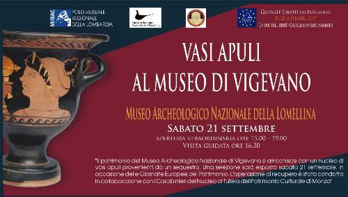 Vasi apuli al Museo di Vigevano - visite guidate