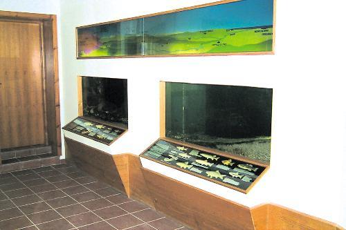 """Museo naturalistico """"Nicola De Leone"""""""